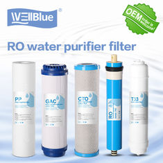 China Granular Active Carbon RO Water Filter Replacement 100% Polypropylene 10 Inch factory