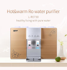 110V/220V Wall Mounted RO Water Purifier With Hot And Cold Water Dispenser