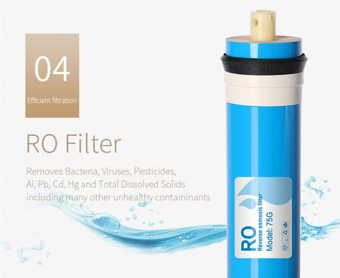 Wall Mounted RO Water Purifier With Heater , Water Filter Machine For Home